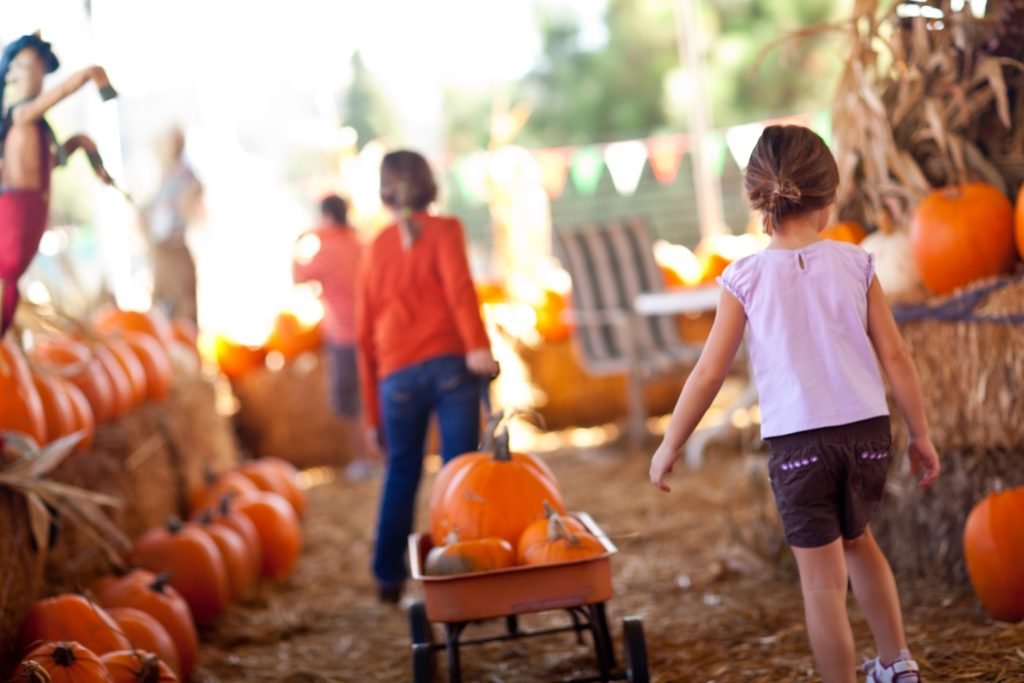 Two little girls carting a wagon with pumpkins in it at a fall farm